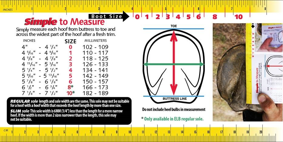 Measuring Chart 2017