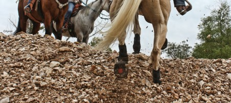 Cavallo Hoof Boots for Trail Riding