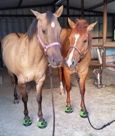 Green Cavallo Trek Horse Hoof Boots Navicular syndrome