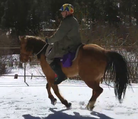 Adam Kittel - using Cavallo Hoof Boots - in snow