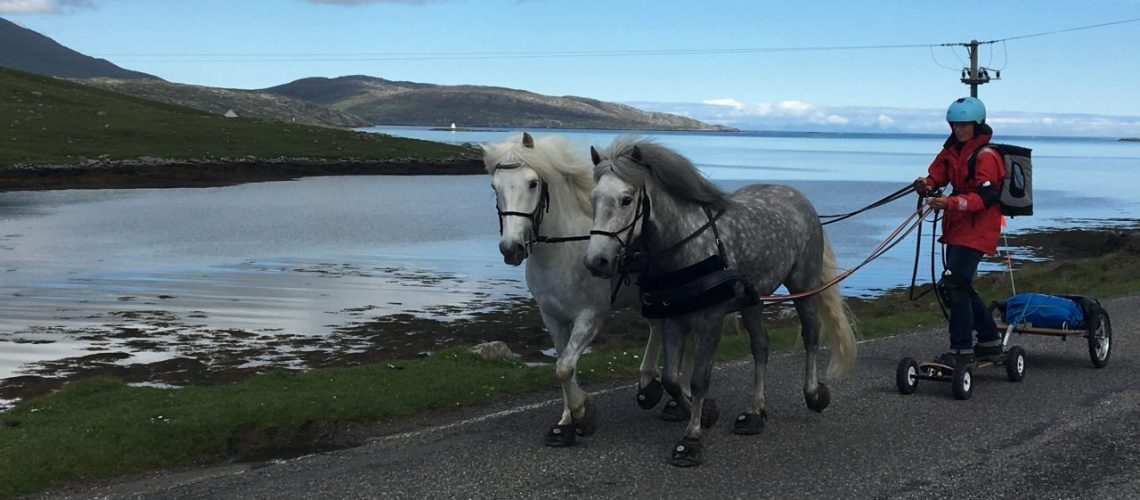 Emma Massingale Horse Boarding along ocean Devon with Cavallo Hoof Boots (2)